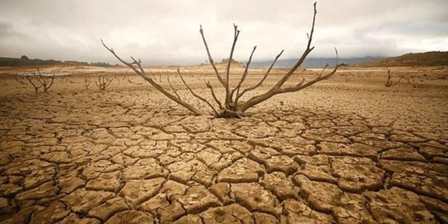 WWF uyardı: Dünyayı büyük bir su sıkıntısı bekliyor