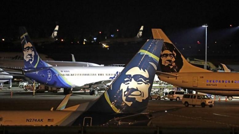 Yolcu uçağı inişi sırasında ayıya çarptı; ayı hayatını kaybetti